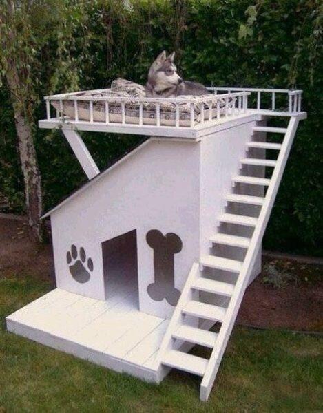 Kreatív kutyaházak 1