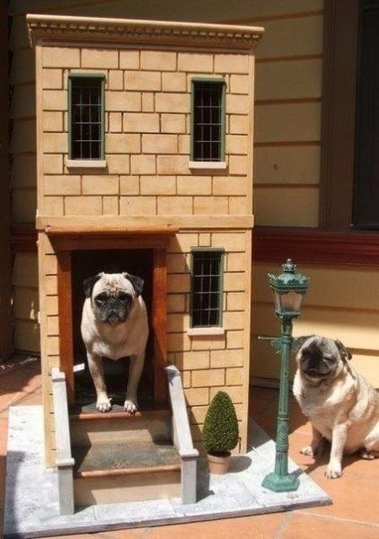 Kreatív kutyaházak 2