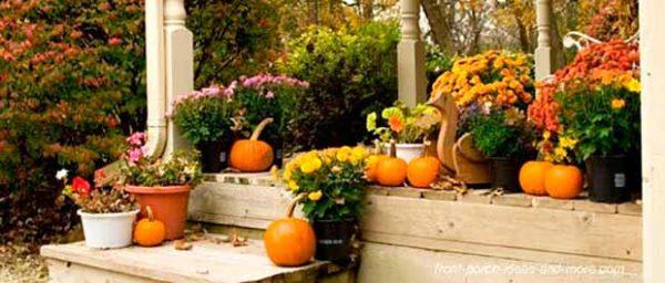 Halloween dekoráció