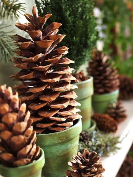 Karácsonyi toboz dekorációk
