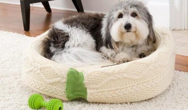 kutyafekhely pulóverből