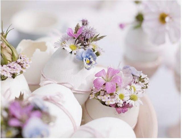 Tojáshéjba ültetett virágok