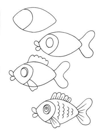 hal rajzolás