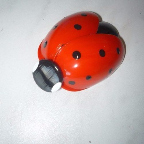 kiskanálból katicabogár